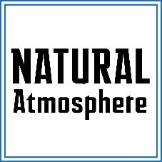 بسته بندی با روش اتمسفر طبیعی که در این حالت محصول فقط در برابر تماس های فیزیکی و تاثیرات مکانیکی در امان خواهد بود.
